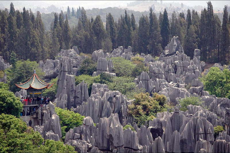 Kunming –The capital of Yunan, a city has one of the mildest climates in China, warm in four seasons.