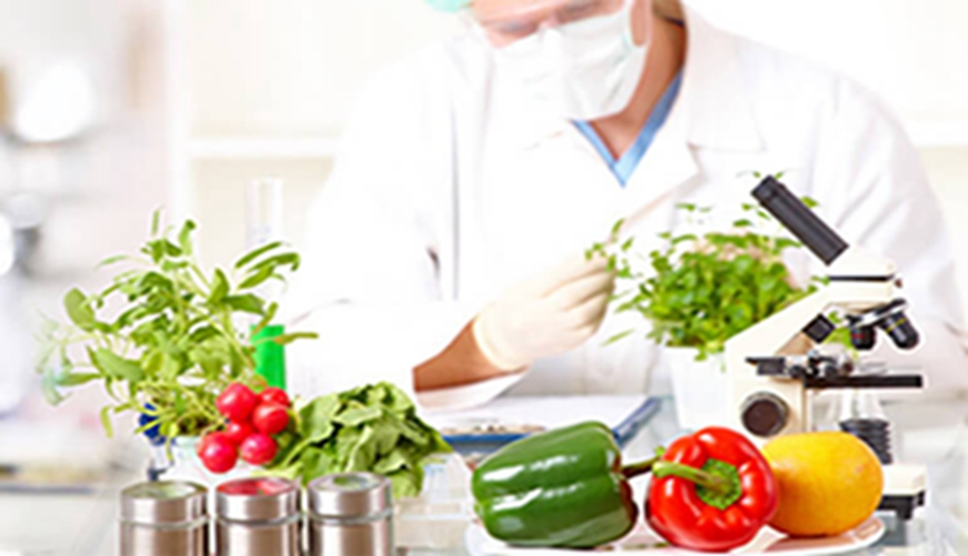 0.5+3 Food science and engineering-PHD Full Scholarship