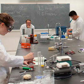Food Science and Engineering-Master Free Tuition Fee