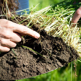 Soil Science-Master Free Tuition Fee