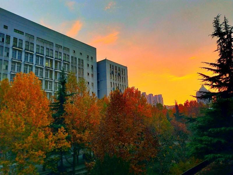 Hebei Medical University