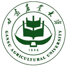 Full scholarship-Construction Engineering Technology in Changde